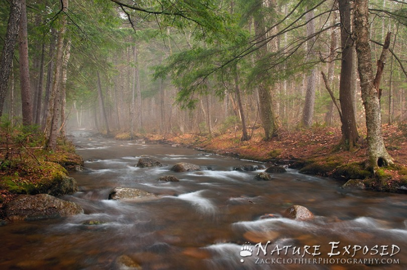 """An Early Spring"" - Adirondack State Park, New York"